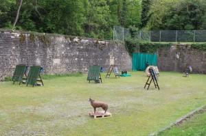 PAS DE TIR Fort de Bron 01